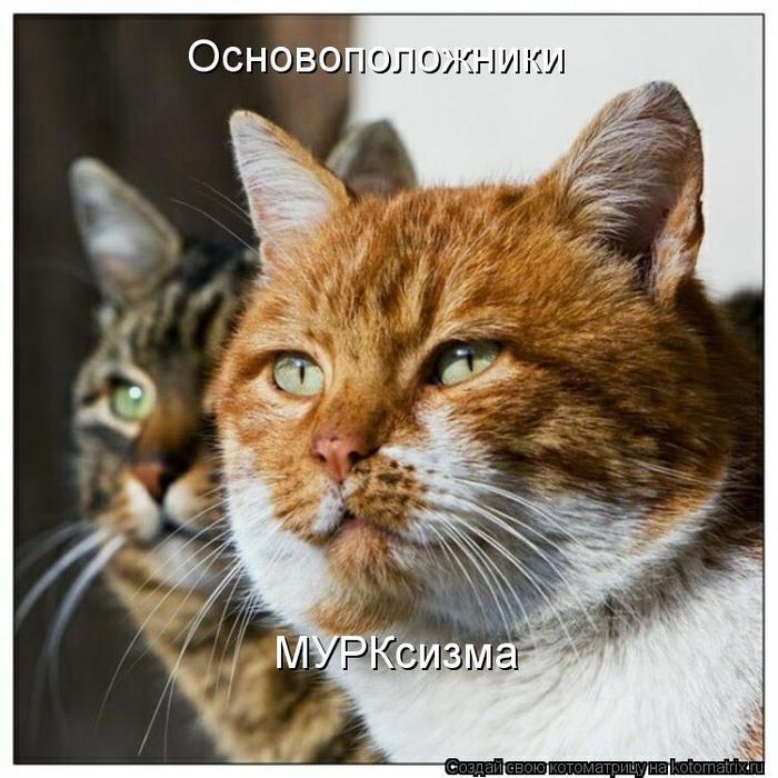 kotomatritsa_Br (700x700, 75Kb)
