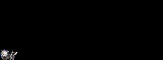 20лет спустя 01 (320x118, 13Kb)