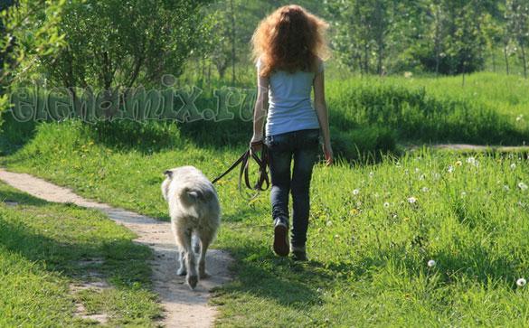 упражнения и прогулки на свежем воздухе/4348076_3pr (585x363, 86Kb)
