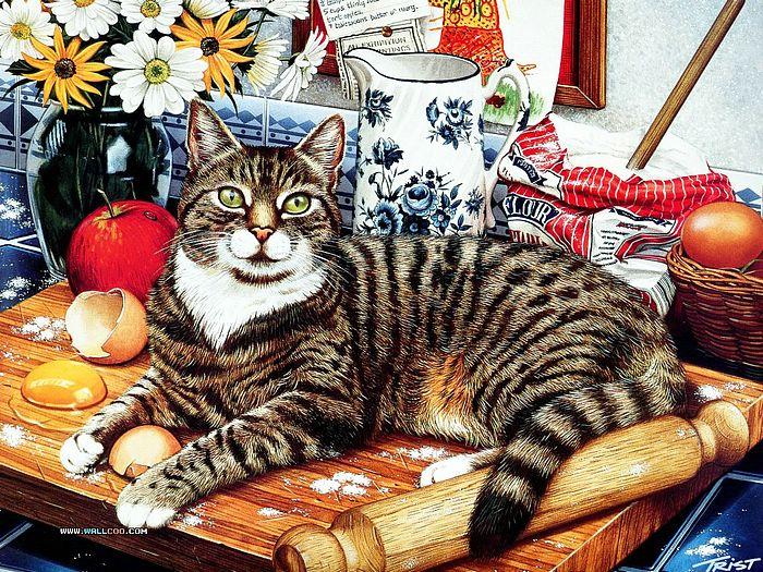 cat 3 (700x525, 684Kb)