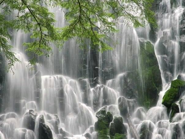 Водопад Рамона расположен на западной стороне горы Худ, штат Орегон, США (604x453, 211Kb)