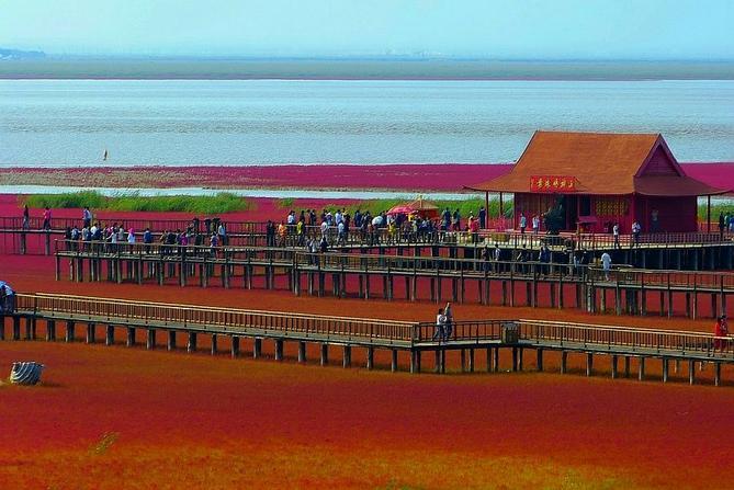 красный пляж китай фото 8 (669x447, 280Kb)