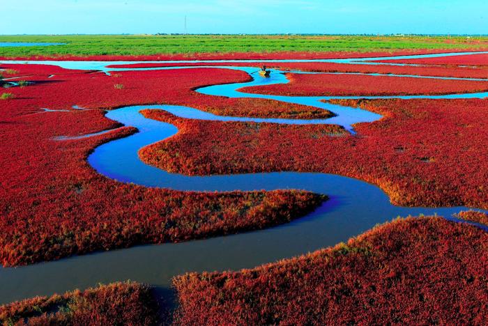 красный пляж китай фото 10 (700x468, 613Kb)