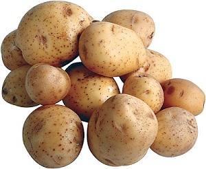 картошка (300x246, 87Kb)