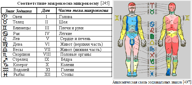 http://img0.liveinternet.ru/images/attach/c/6/124/293/124293918_152_Makro_i_mikrokosm.PNG