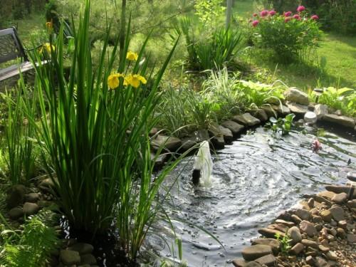вода и водоемы на участке 124311508_fullsize3