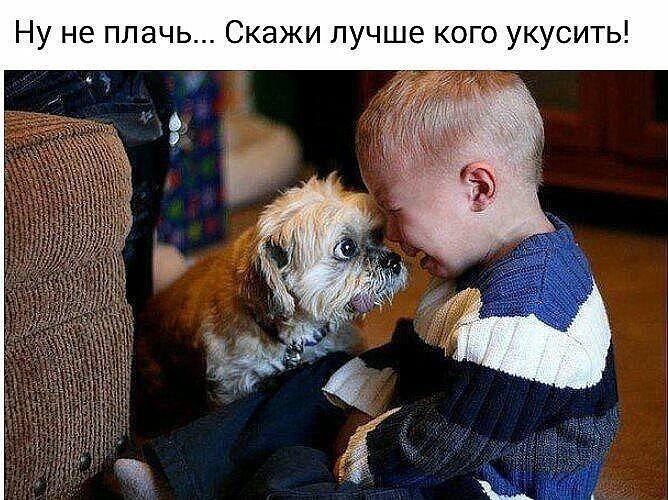 124014585_image (668x500, 100Kb)