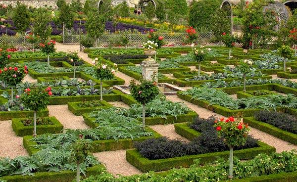 Сад огород своими руками с фото