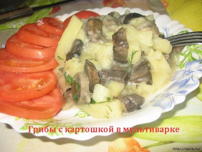 2835299_Gribi_s_kartoshkoi_v_myltivarke (700x525, 271Kb)
