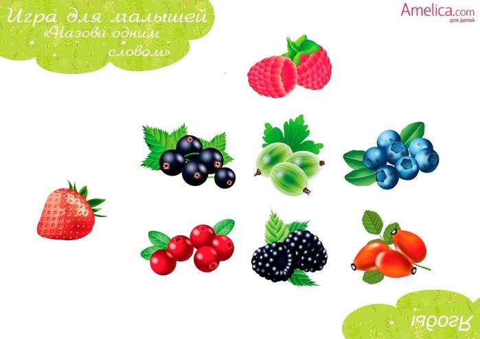 Didakticheskie_igry_dlya_detey_svoimi_rukami_igra_na_obobshchenie-4 (700x494, 137Kb)
