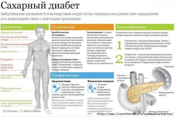 Помогут ли пиявки при диабете