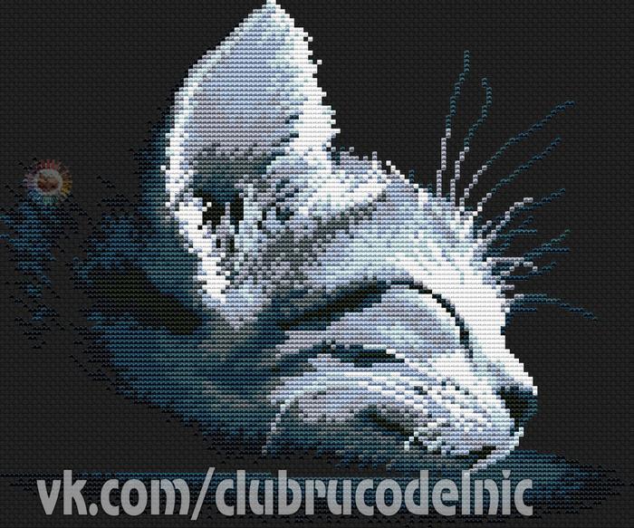Котенок (700x583, 495Kb)