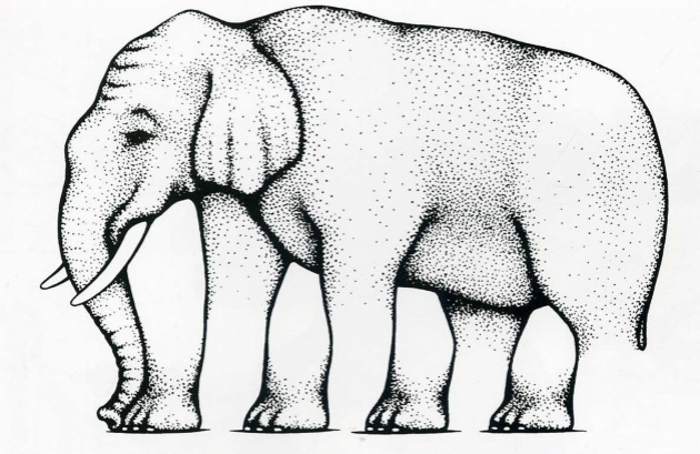 4897960_4908905R3L8T8D630elephant_preview (630x409, 115Kb)