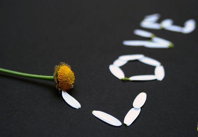 Love_www.topnaz.com_-3 (650x449, 42Kb)
