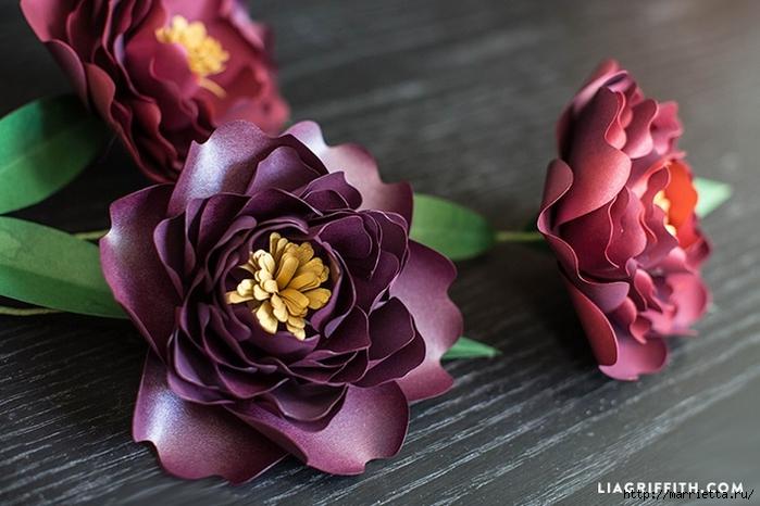 ПИОНЫ - цветы из декоративной металлизированной бумаги для скрапбукинга (3) (700x466, 230Kb)