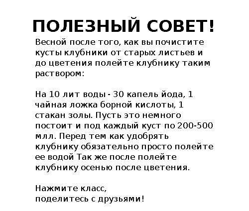 image (500x424, 109Kb)