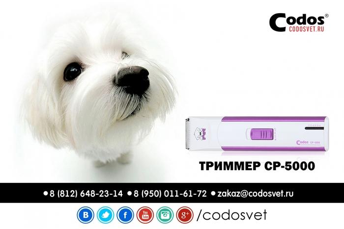 ������� CODOS CP-5000/1302958_codos_ad_07 (700x467, 147Kb)