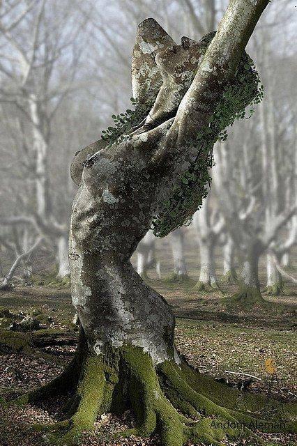 женщина- дерево (426x640, 274Kb)