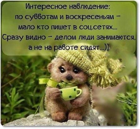 image (2) (446x411, 50Kb)