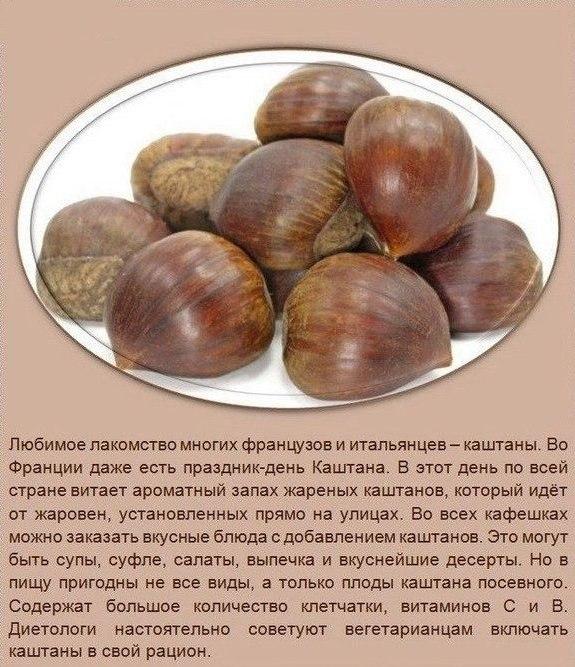 Польза орехов (575x667, 313Kb)
