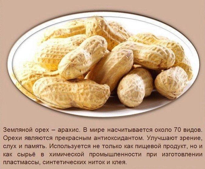 Польза орехов3 (676x556, 315Kb)