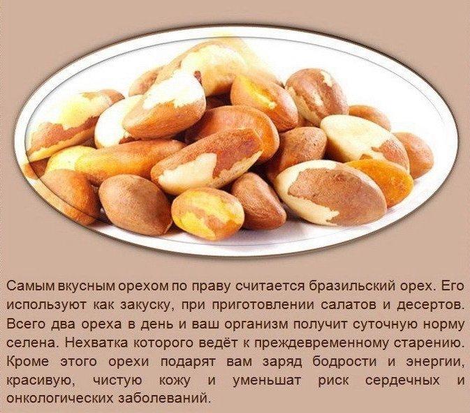 Польза орехов5 (673x592, 342Kb)