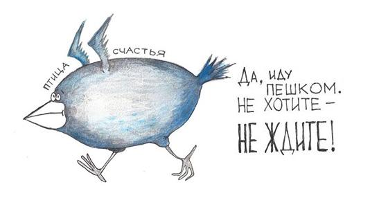 bird (534x286, 35Kb)