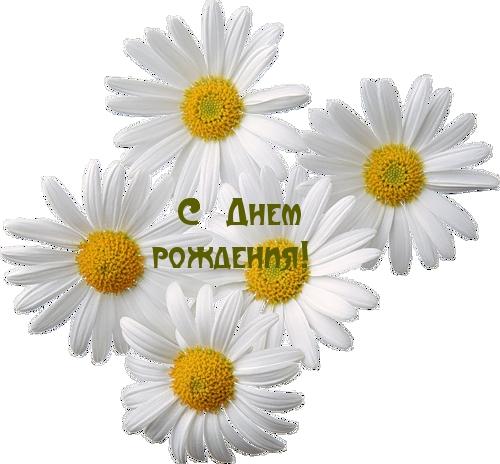 -pics_max-images_2363 (500x464, 146Kb)