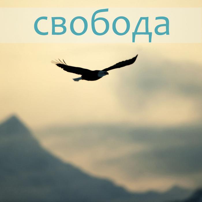 3579231_124478115_3579231_fonstola_ru1361961 (700x700, 220Kb)
