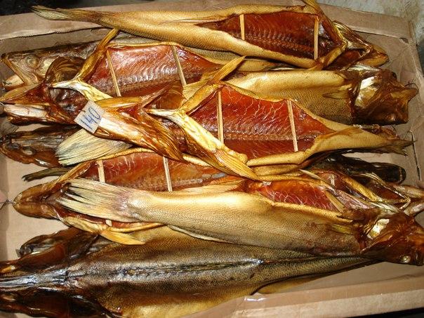Как коптить рыбу сырок в домашних условиях - Zerkalo-vip.ru