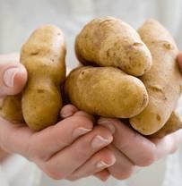 lechenie kartofelem (203x208, 6Kb)