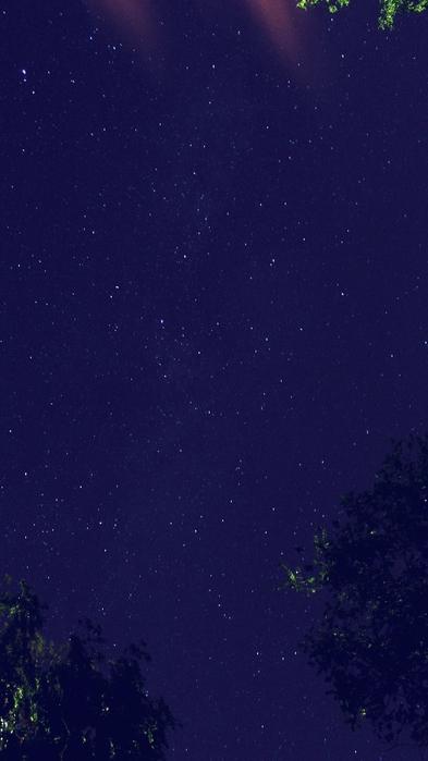 IMG_0651Р° (393x700, 173Kb)