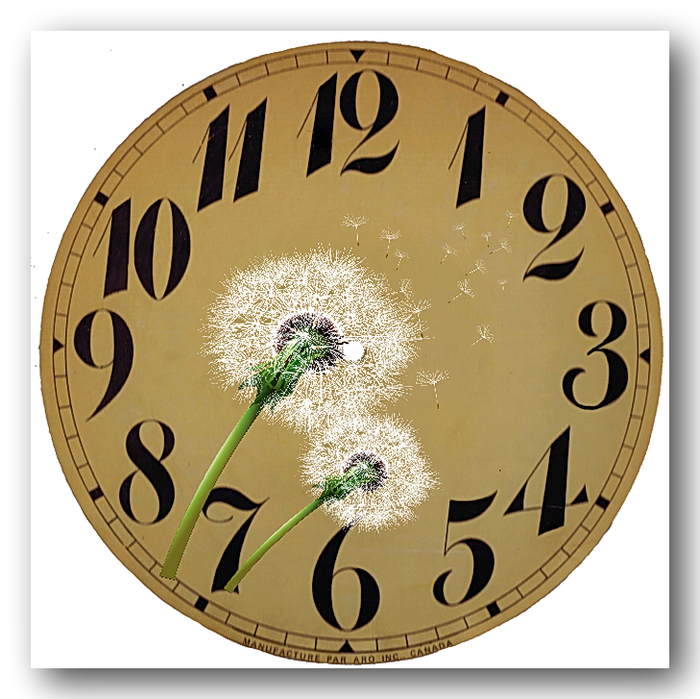 Clock Face via Knick of Time copy (700x699, 582Kb)