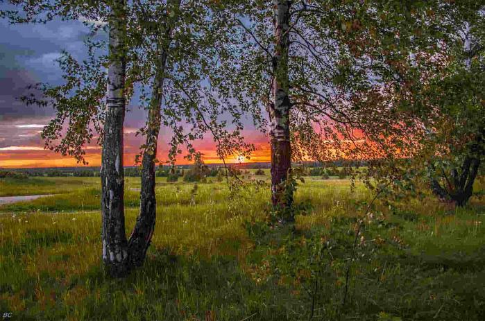 Закат в лесу_orig (700x463, 455Kb)