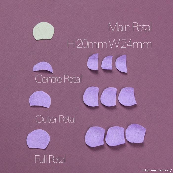 ЛЮТИКИ из креповой бумаги. Мастер-класс (25) (700x700, 290Kb)