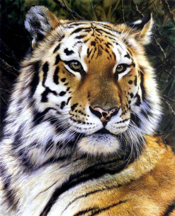 animal_artist_1 (565x700, 498Kb)