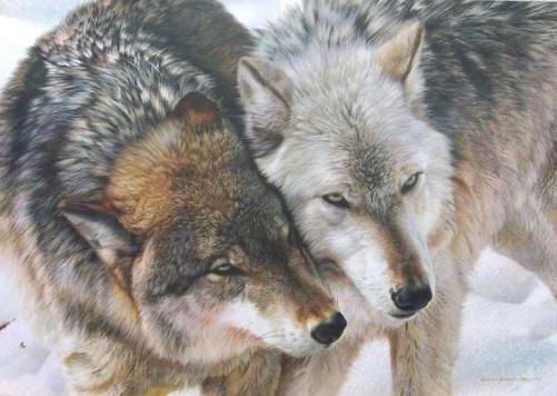 animal_artist_39 (501x356, 155Kb)