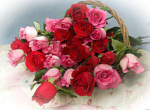 Красивые букеты цветов2а (640x468, 247Kb)