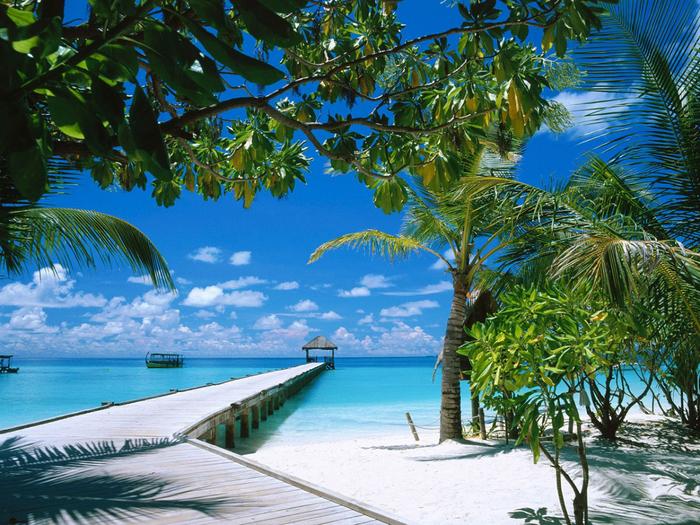 Maldivi (700x525, 600Kb)