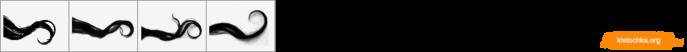 ID0592 (700x52, 14Kb)