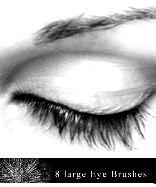 8_Large_Eye_Brushes__by_gfxgurl (500x600, 153Kb)
