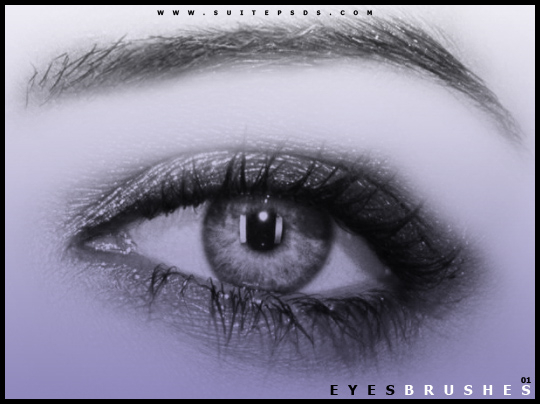 EyeBrushes01_by_SuitePSDs (540x404, 141Kb)