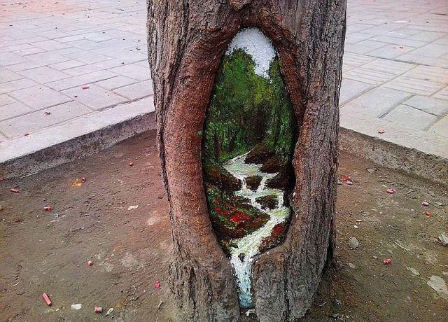 Необычное творчество в дуплах деревьев (640x460, 319Kb)
