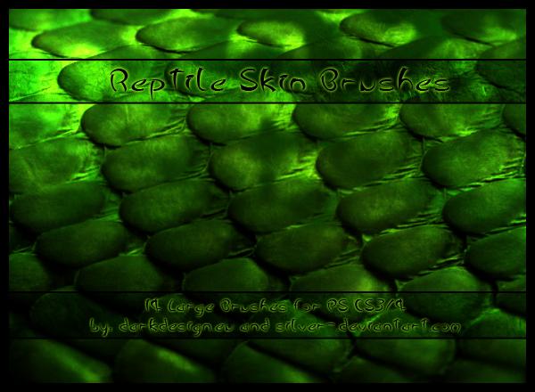 Кожа рептилий (600x440, 320Kb)