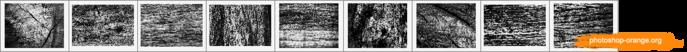 Кора деревьев (700x52, 57Kb)