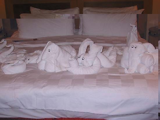 in hotel (550x412, 23Kb)