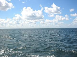 море у моих ног (320x240, 15Kb)