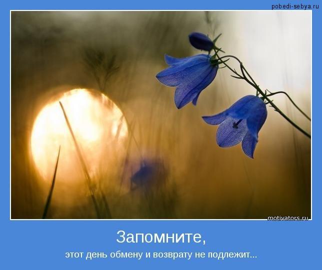 Картинки-мотиваторы. Обсуждение на ...: www.liveinternet.ru/users/mushel/post227617245