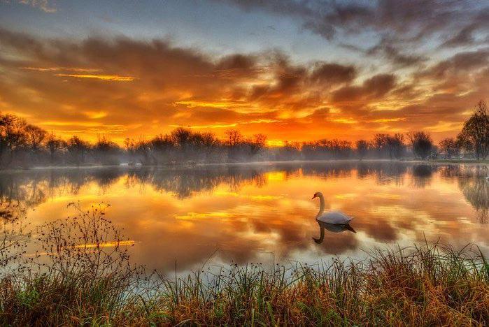 Сказочное озеро недалеко от Загреба, Хорватия (700x468, 73Kb)