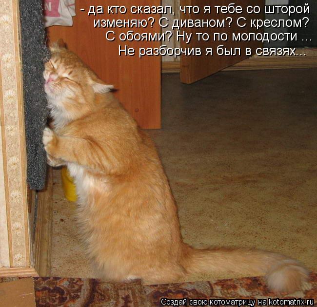 kotomatritsa_20 (650x630, 71Kb)